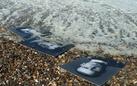 FOTO Movie   Dans un océan d'images. J'ai vu le tumulte du monde di Helen Doyle