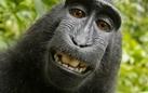 #clickme!! Il ritratto fotografico dal dagherrotipo al selfie