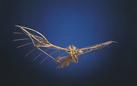 Leonardo da Vinci: Visions. Le sfide tecnologiche del genio universale